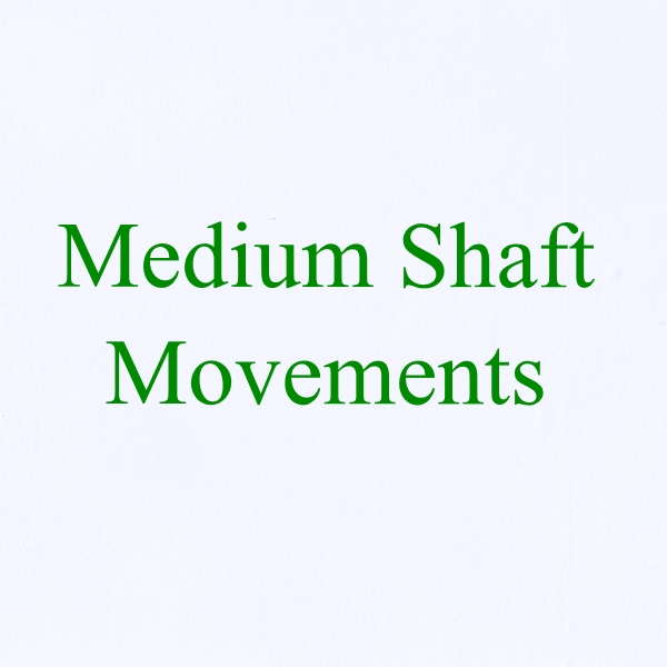 5x,10x or 20x Medium Shaft Movements & Hands