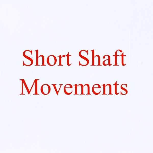 5x,10x or 20x Short Shaft Movements & Hands