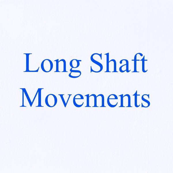 5x, 10x or 20x Long Shaft Movements & Hands