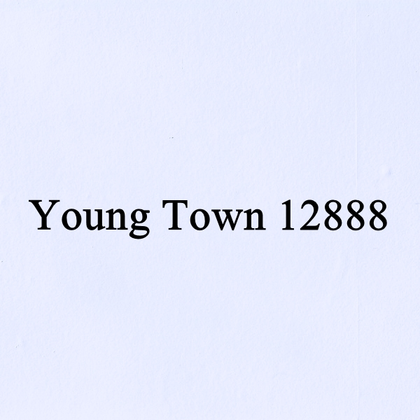 Young Town 12888 Movements